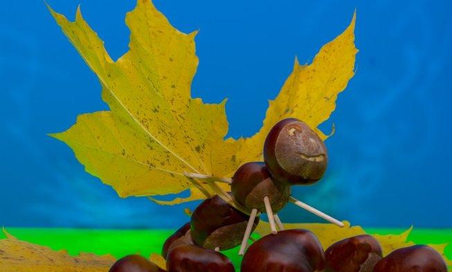 Fur Die Herbst Deko Und Mehr Gegen Die Langeweile Basteln Mit