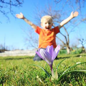 child_krokus_andreas_pixabay_300x300