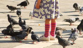 Familienurlaub Italienische Adria: unkompliziert und facettenreich