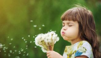 Kleine Entdecker im eigenen Garten. Oder: Gegen Neugier ist kein Kraut gewachsen!