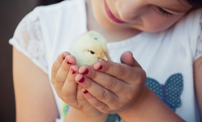 Kleine Geschenke Die Kindern Zu Ostern Große Freude Machen