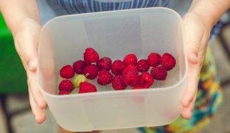 Zu Hause ist es bekanntlich am schönsten. Und Obst und Gemüse aus dem eigenen Garten schmeckt oft am besten!